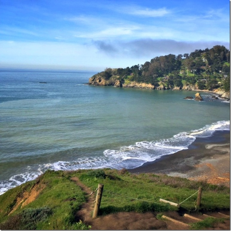 Zika Free Vacation Destination Muir Beach